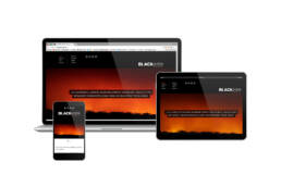 Blackash Responsive Website Design by Iezzi Creative